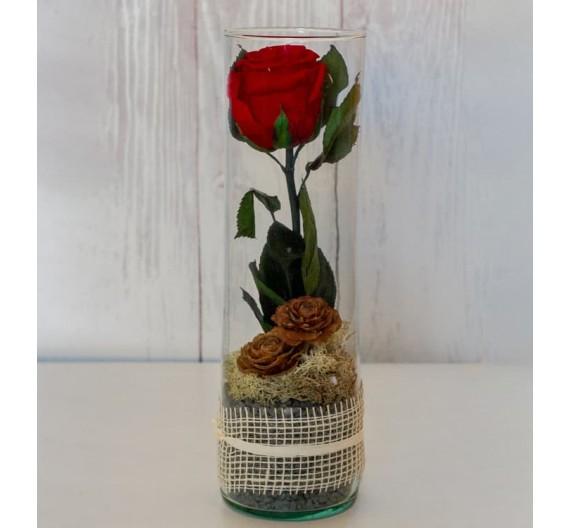 Soledad romántica