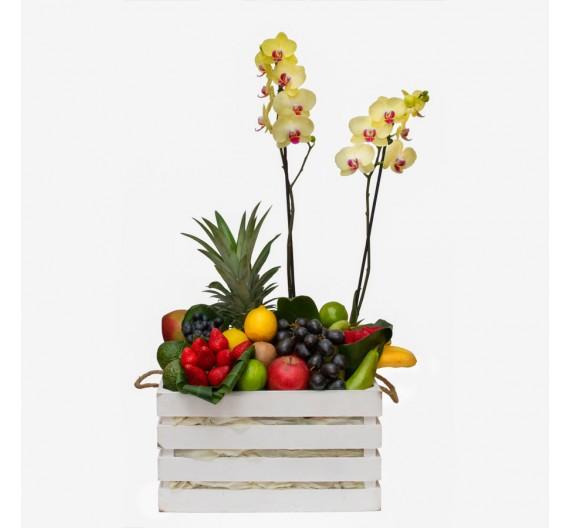 Boîte de fruits tropicaux